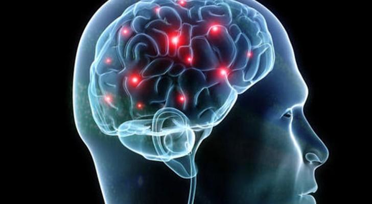 Die Gehirne von 3 Personen wurden erfolgreich miteinander verbunden, was den Austausch von Informationen ermöglichte