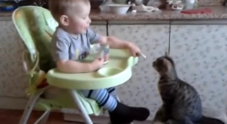 L'adorable bébé qui donne à manger à son ami le chat <3