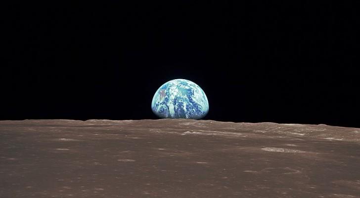 La sonda cinese atterrata sul lato oscuro della Luna ha portato con sé piante ed animali