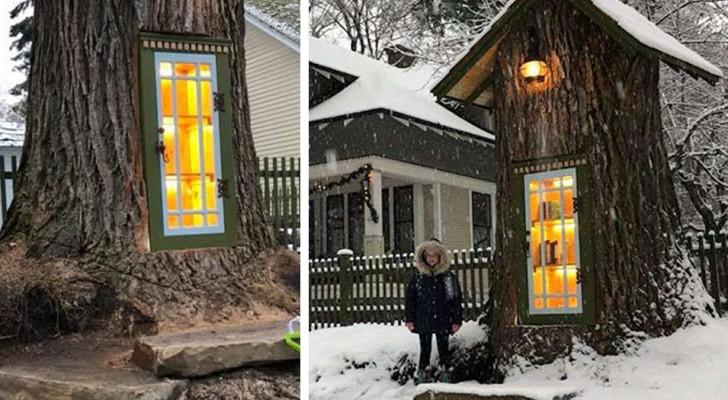 Eine Frau verwandelt eine alte, kranke Eiche in eine kleine, magisch aussehende Bibliothek