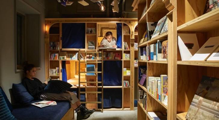 Apre a Napoli il primo Book and Bed d'Italia, la libreria in cui si può leggere e dormire