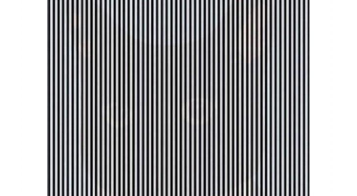 In diesem Bild ist ein Tier versteckt, und um es zu sehen, muss man den Kopf schütteln