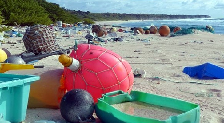 Van Werelderfgoed tot een stortplaats in de openlucht: de droevige teloorgang van Henderson Island