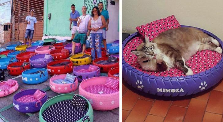 Cet homme aide l'environnement d'une manière créative : il transforme de vieux pneus en couchettes pour chiens et chats