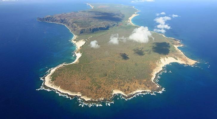 L'île