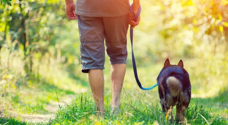 Caminhar é o melhor modo para curar a alma das energias negativas
