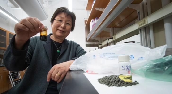Scoperto un nuovo processo chimico per trasformare i rifiuti plastici in combustibile
