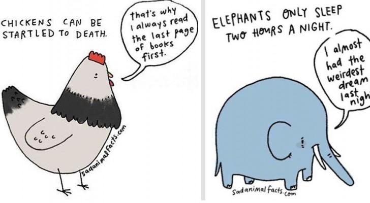 Un illustratore ha disegnato fatti tristi sugli animali che vi faranno ridere e intenerire allo stesso tempo