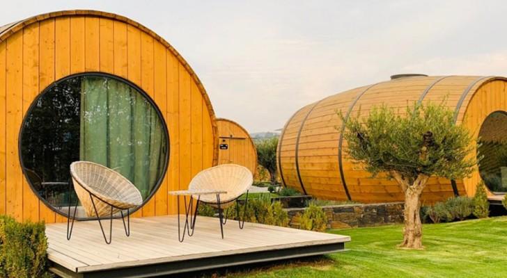 Le rêve des amateurs de vin devient réalité : cette entreprise agricole vous fait dormir dans des tonneaux géants