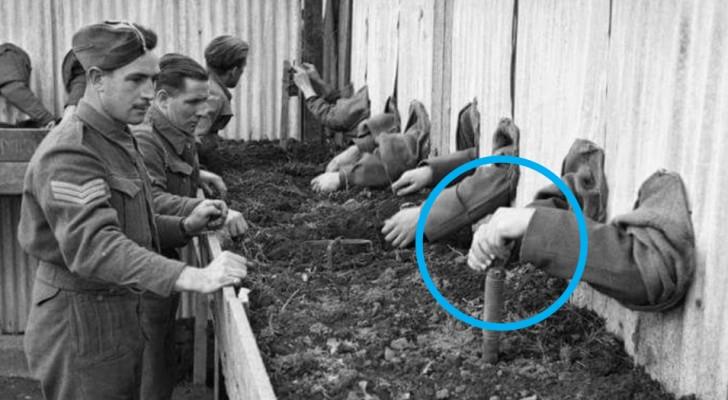 17 images incroyables qui racontent l'histoire du 20e siècle comme vous ne l'avez jamais vue auparavant