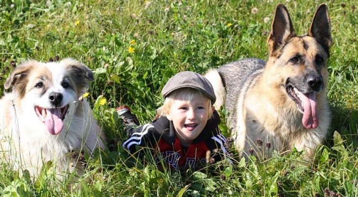 Voici pourquoi les enfants qui apprennent à aimer les animaux deviennent de meilleurs adultes
