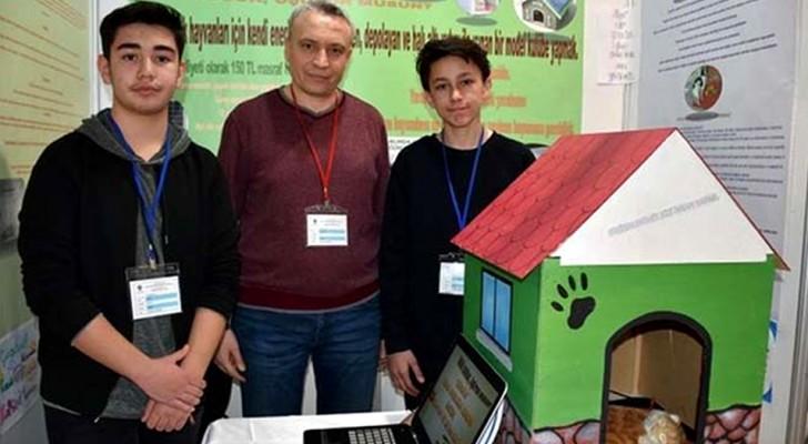 Zwei Studenten erfinden einen solarbeheizten Zwinger, um streunende Hunde und Katzen vor der Winterkälte zu schützen