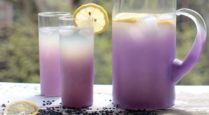 Lavendel limonade: hoe deze kostbare bondgenoot tegen angst en stress te bereiden