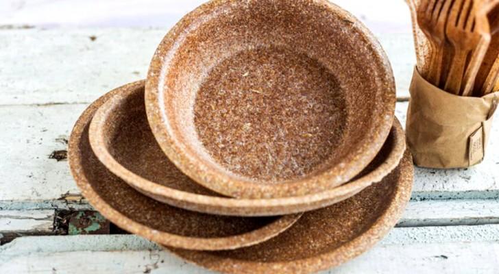 Toronto : la vaisselle et les couverts de son de blé font leurs débuts lors d'un événement public