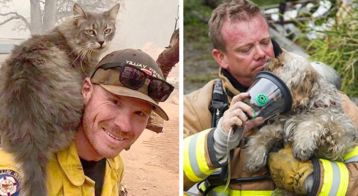 15 conmovedoras fotos de bomberos que han arriesgado la vida para salvar los cachorros en peligro