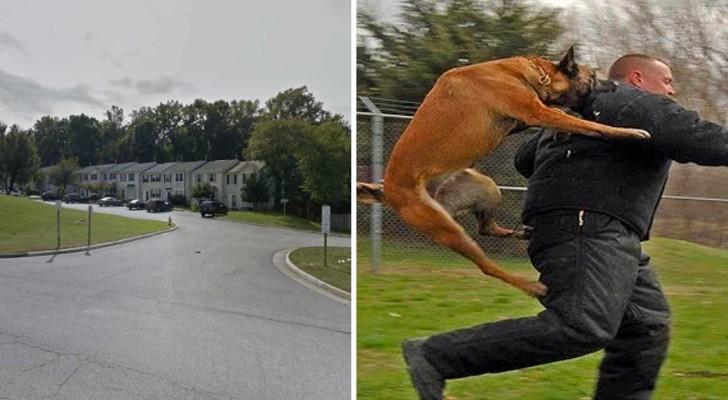 Um homem chega perto de uma menina de 10 anos, mas não imagina que o seu cachorro estava por perto