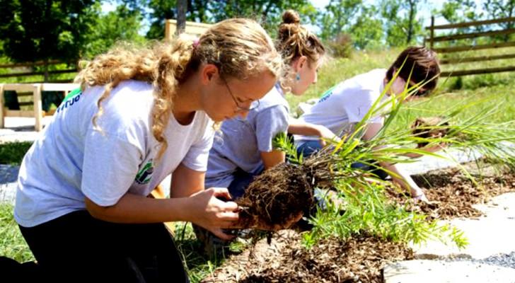 Tuinieren is net zo goed als naar de sportschool gaan: dit is waarom, volgens een onderzoek