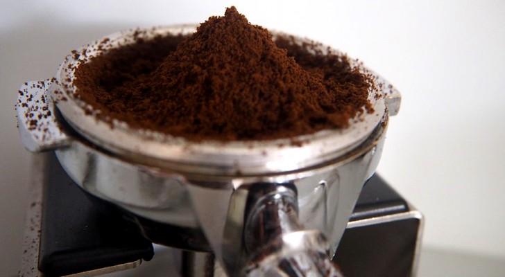 17 eenvoudige ideeën voor het gebruik van koffiedik: na het lezen van het artikel gooi je het nooit meer weg