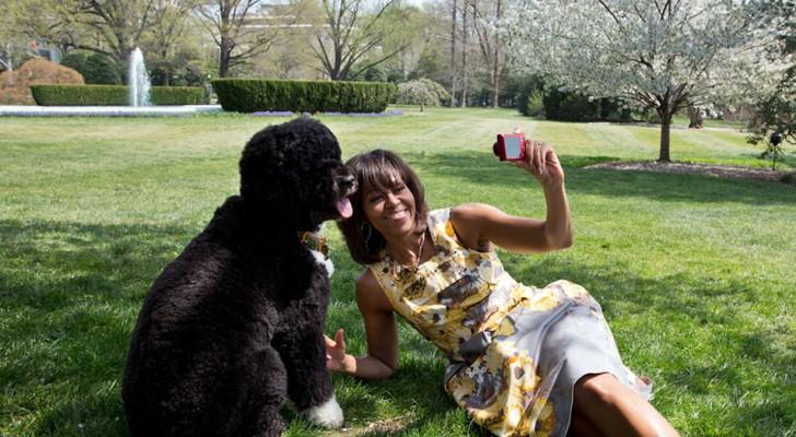 Chi ha un cane si fa più selfie con lui che con il proprio partner: lo rivela una curiosa ricerca