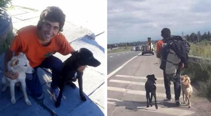 Trova 2 cani abbandonati ma nessun bus vuole farli salire: così percorre 1.400 km a piedi per portarseli a casa