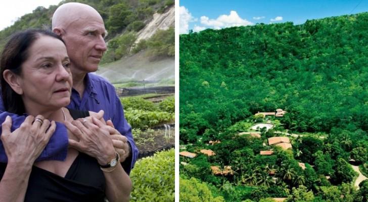 Un mari et sa femme redonnent vie à une forêt entière en plantant 2 millions d'arbres en 20 ans