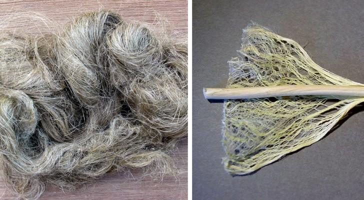 Levi Strauss hat einen neuen Stoff aus Hanf geschaffen, mit dem wir die Baumwolle nicht vermissen werden