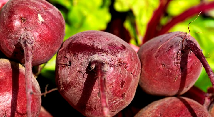Rote Bete: Das sind alle Vorteile dieses Gemüses mit überraschenden Eigenschaften