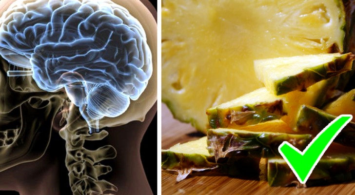 The 6 foods that increase serotonin which is your brain's favorite food!