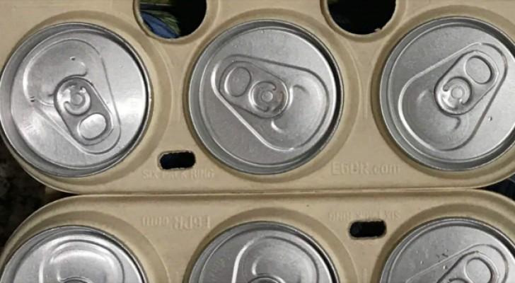 Essbare Bierverpackungen: die Idee eines Start-ups zur Rettung von Meerestieren