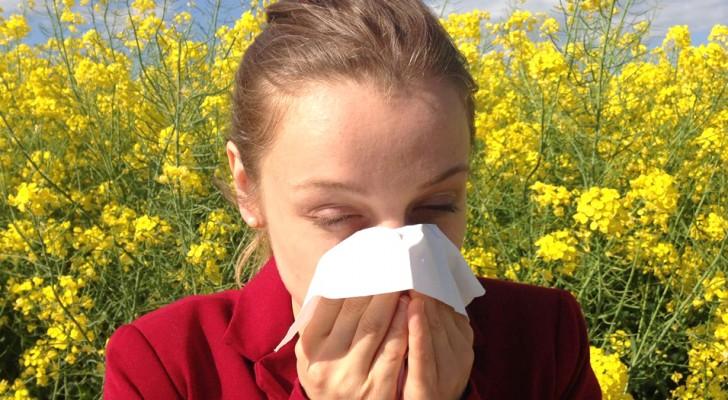 Le allergie stagionali diventano sempre più aggressive a causa dei livelli di anidride carbonica nell'atmosfera: ecco perché