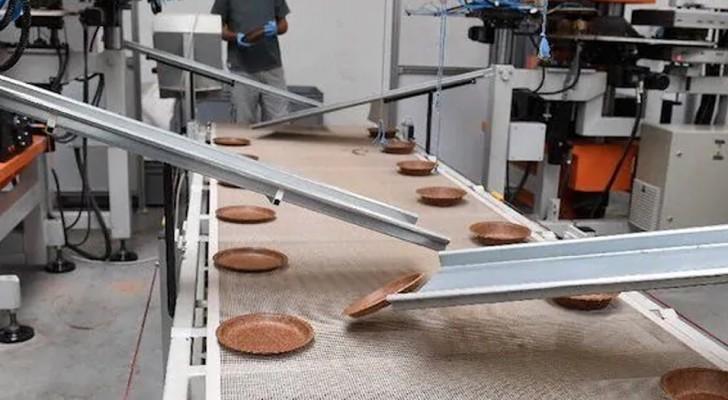 Essbare und biologisch abbaubare Schalen für eine Zukunft ohne Kunststoff: So werden sie hergestellt
