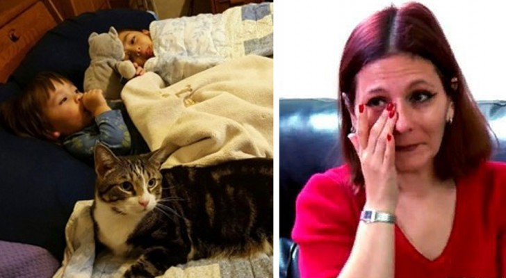 Das Mädchen war im Begriff, im Schlaf zu ersticken: Die Katze erregt die Aufmerksamkeit ihrer Mutter und rettet ihr Leben