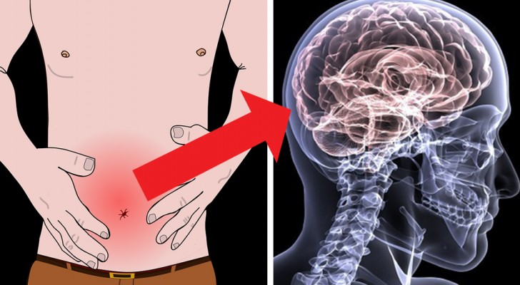 Physical pain could be linked directly to your emotional state and here is why ...