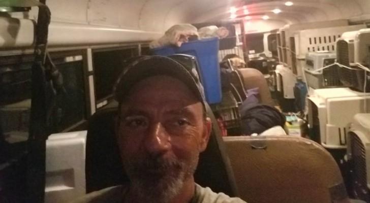 Un chauffeur voit de nombreux animaux en difficulté pendant l'ouragan, alors il transforme le bus en arche de Noé