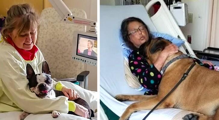 In questo ospedale i pazienti possono ricevere le visite di propri cani, e le immagini fanno bene al cuore