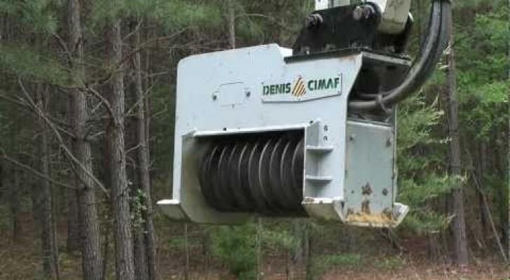 Olhem como esta máquina destrói árvores inteiras