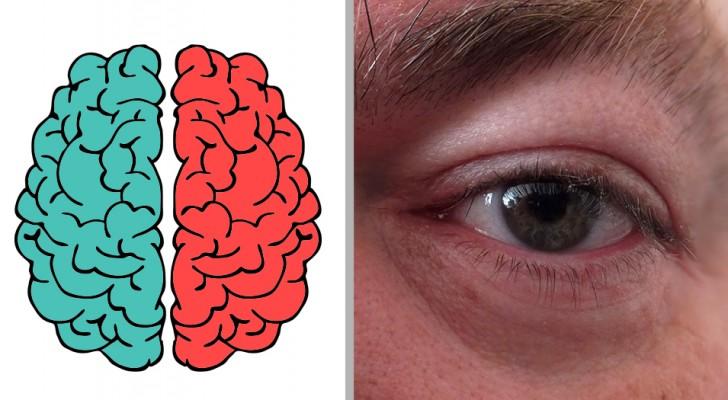 Welke hersenhelft gebruik je het meest? Ontdek het met deze test!