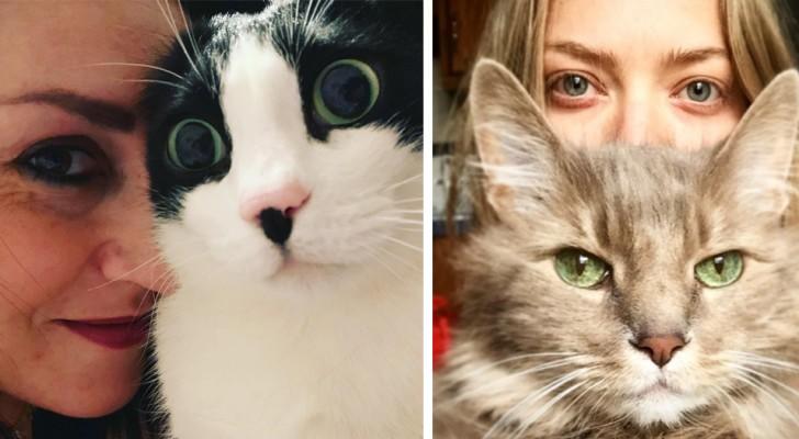 Il vostro gatto è insopportabile? Attenti, potrebbe aver ripreso da voi