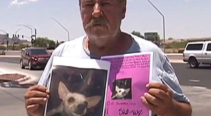 Este homem desesperado oferece a sua casa como recompensa a quem ajudá-lo a encontrar o seu cachorro