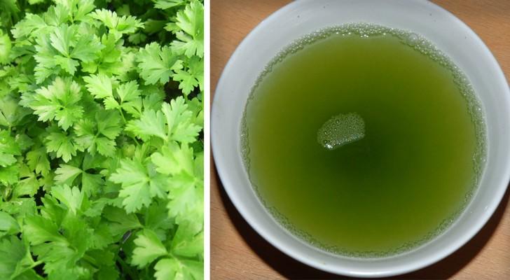 Come preparare l'acqua al prezzemolo, l'efficace bevanda detox per il tuo organismo