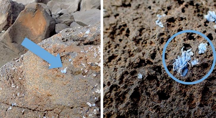 Le plastique dans nos mers s'incruste dans les roches : bienvenue dans l'ère des Hommes