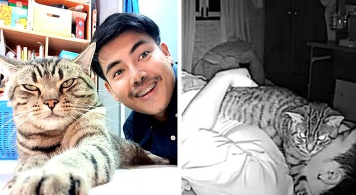 Un ragazzo installa una telecamera per controllare il suo gatto... e scopre che di notte lui cerca di soffocarlo