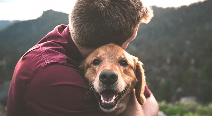 Los poseedores de perros son las personas más FELICES en el mundo y la ciencia lo confirma
