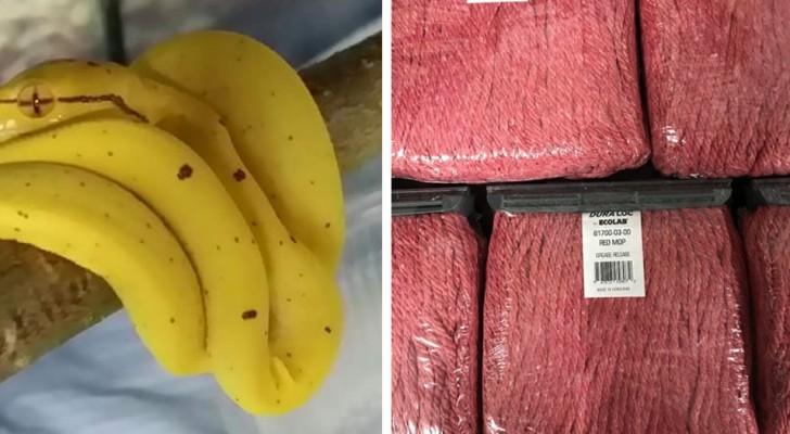 18 Objekte, die auf den ersten Blick wie leckere essbare Lebensmittel aussehen.... aber überhaupt nicht essbar sind