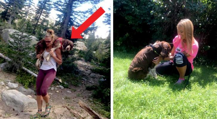Cette randonneuse sauve un chien blessé et le transporte sur ses épaules pendant 10 km