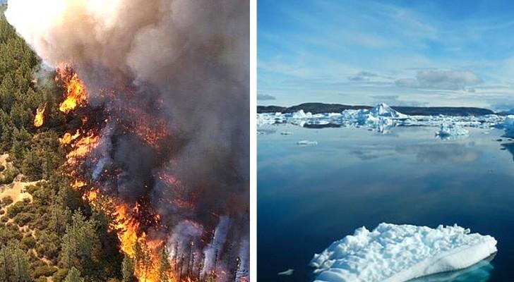 Il fumo degli incendi siberiani fa sciogliere i ghiacci a migliaia di km di distanza