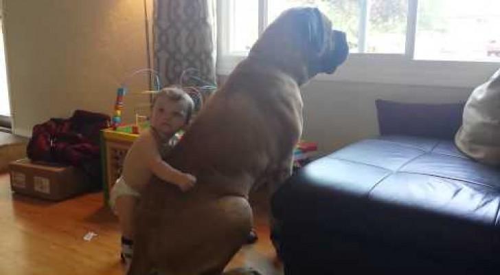 Questo cucciolo di uomo e questo gigante dolcissimo stanno facendo commuovere il mondo intero