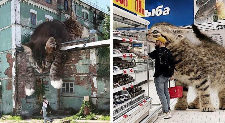 Questo artista russo ci mostra come sarebbe il pianeta Terra se fosse dominato da gatti...giganteschi!
