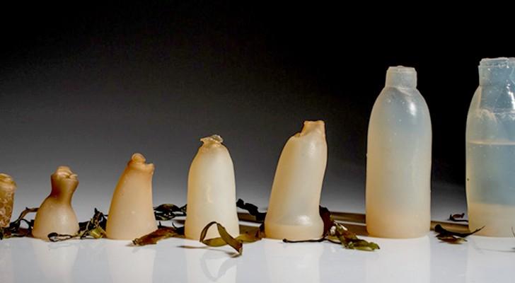 Questo studente ha ideato una bottiglia fatta di alghe 100% naturale e biodegradabile