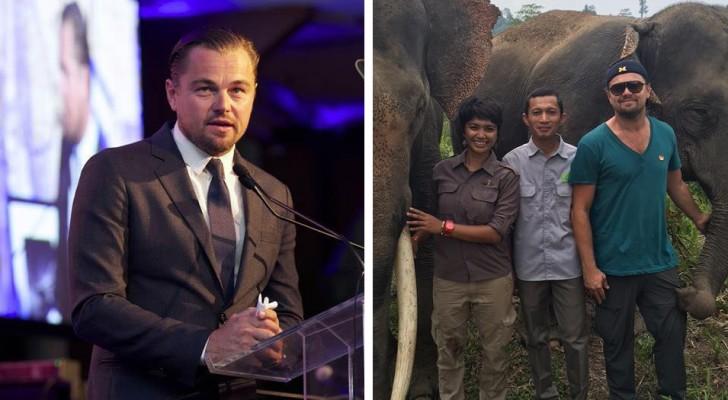 Leonardo DiCaprio a donné 100 millions de dollars pour dire non à la chasse